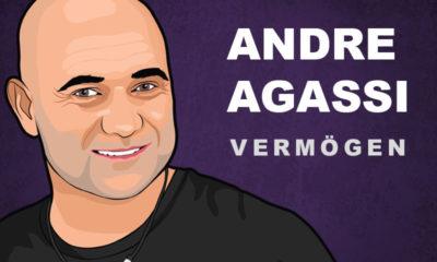Andre Agassi Vermögen und Einkommen