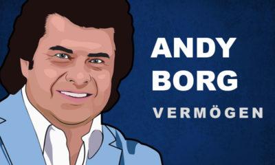 Andy Borg Vermögen und Einkommen