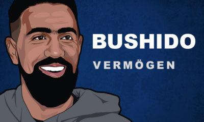 Bushido Vermögen und Einkommen