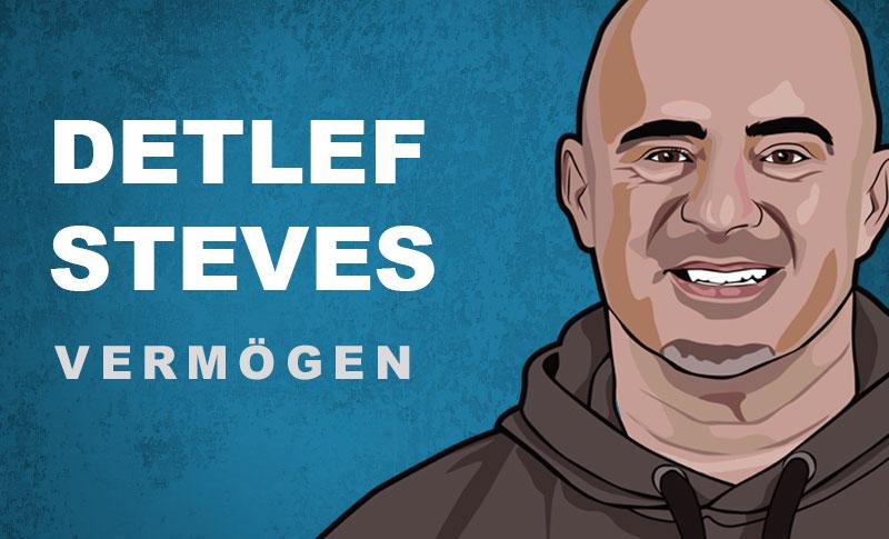 Detlef Steves Vermögen und Einkommen
