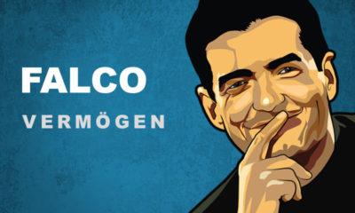 Falco Vermögen und Einkommen