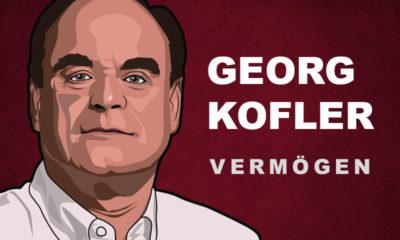 Georg Kofler Vermögen und Einkommen