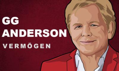 G.G. Anderson Vermögen und Einkommen