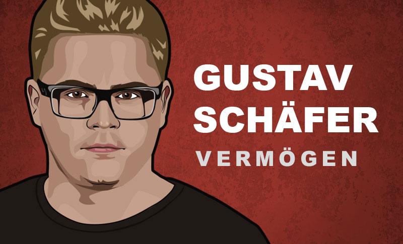 Gustav Schäfer Vermögen und Einkommen