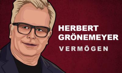 Herbert Grönemeyer Vermögen und Einkommen