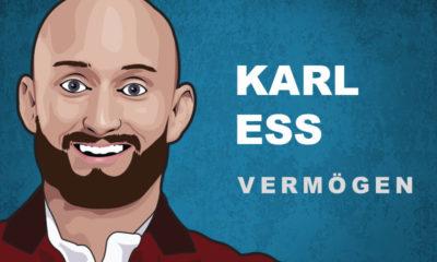Karl Ess Vermögen und Einkommen