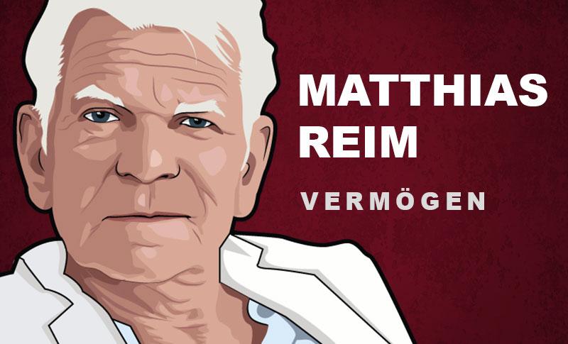 Matthias Reim Vermögen und Einkommen