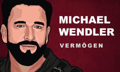 Michael Wendler Vermögen und Einkommen