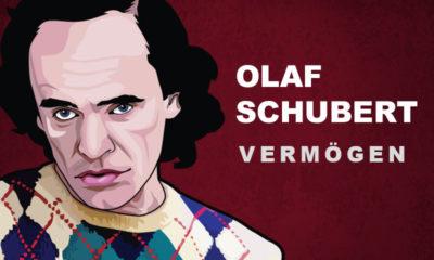 Olaf Schubert Vermögen und Einkommen