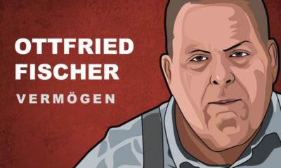 Ottfried Fischer Vermögen und Einkommen