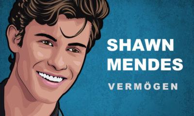 Shawn Mendes Vermögen und Einkommen