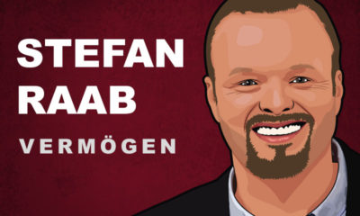 Stefan Raab Vermögen und Einkommen