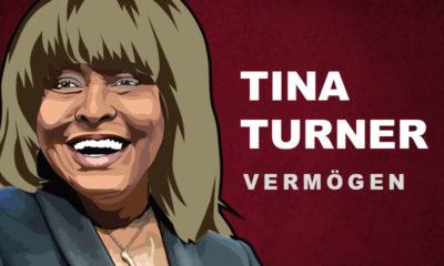 Tina Turner Vermögen und Einkommen