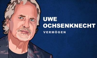 Uwe Ochsenknecht Vermögen und Einkommen
