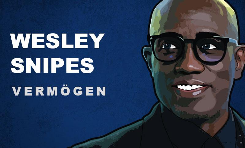 Wesley Snipes Vermögen