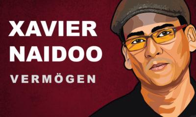 Xavier Naidoo Vermögen und Einkommen