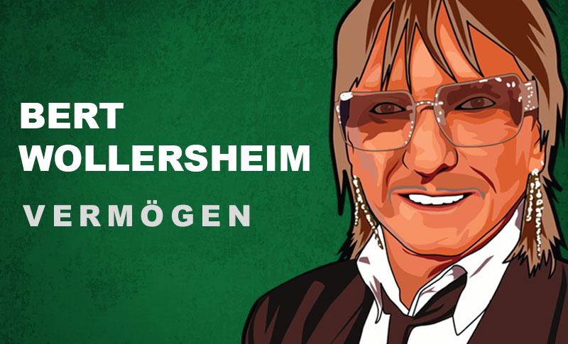 Bert Wollersheim Vermögen und Einkommen