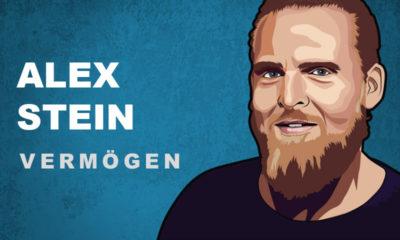Axel Stein Vermögen und Einkommen