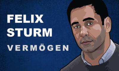 Felix Sturm Vermögen und Einkommen