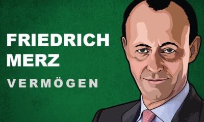 Friedrich Merz Vermögen und Einkommen