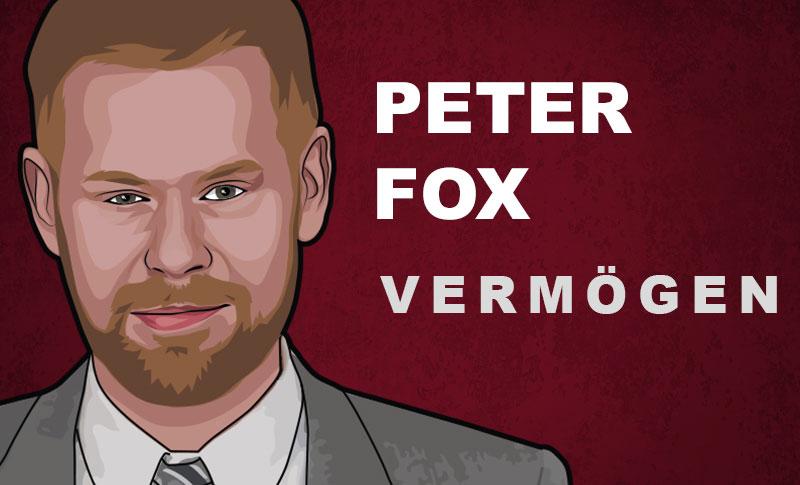 Peter Fox Vermögen und Einkommen