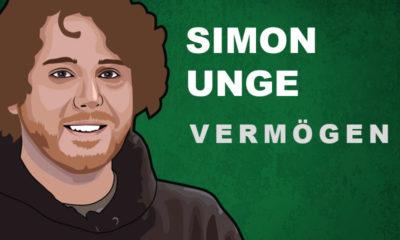 Simon Unge Vermögen und Einkommen