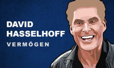 David Hasselhoff Vermögen und Einkommen