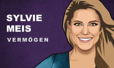 Sylvie Meis Vermögen